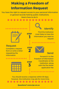 Filing a Freedom of Information request (infographic)